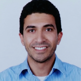 Sam Badawy, Rideshare Expert